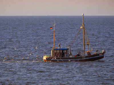 Crab fisheries at  Wangerooge